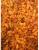 Dried Raisins White 1
